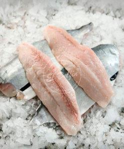 Filet de Lomito de Atún-0